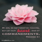 Proverbs 3:1 I DailyBibleMeme.com