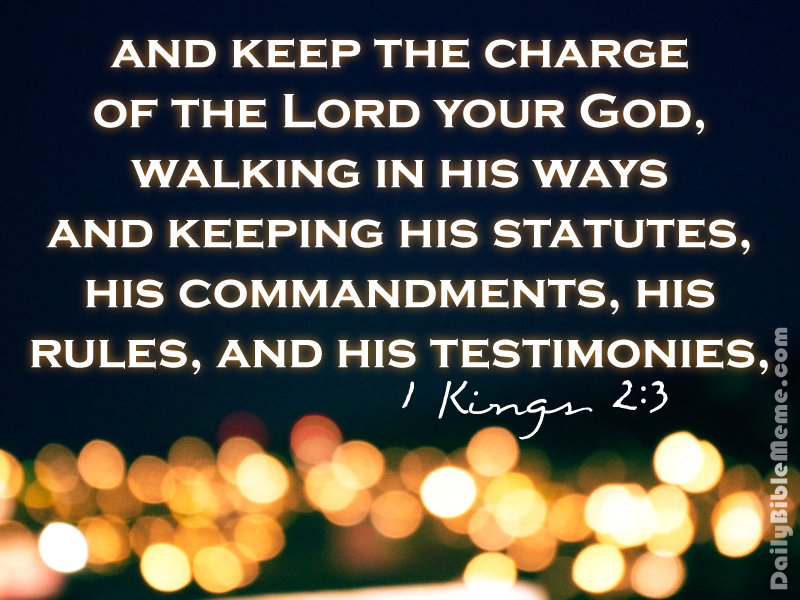 1 kings 3 Simple bible reading guide 2 kings the revelation of your words sheds light, giving understanding to the simple.