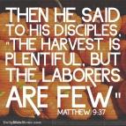Matthew 9:37 I DailyBibleMeme.com