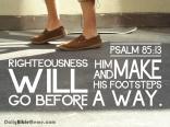 Psalm 85:13 I DailyBibleMeme.com