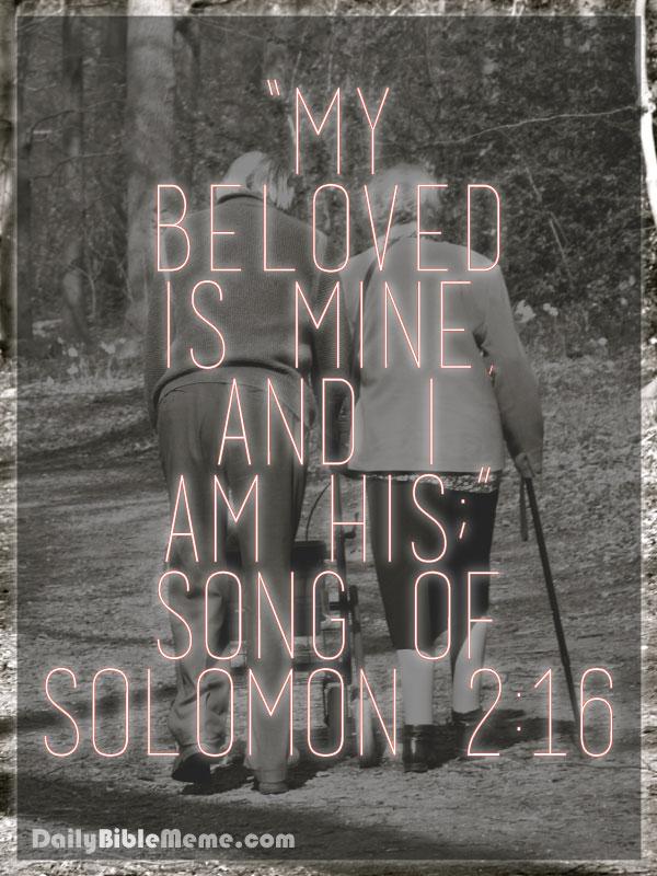 Song Of Solomon Daily Bible Meme